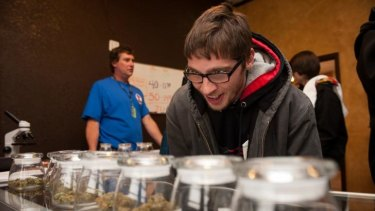 Goggled-eyed: Tyler Williams of Blanchester, Ohio, decides which strain of marijuana to buy at the 3-D Denver Discrete Dispensary in Denver, Colorado, on January 1.