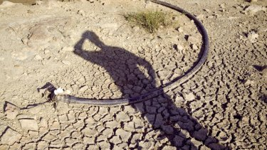 Parched earth.