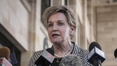 WA Agriculture Minister Alannah MacTiernan speaks to the media outside Parliament House after clashing with her federal counterpart.