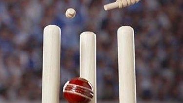 Domain has secured a partnership with Cricket Australia.