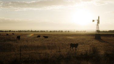 A report has revealed the extent of debt being held by Queensland's rural industries.