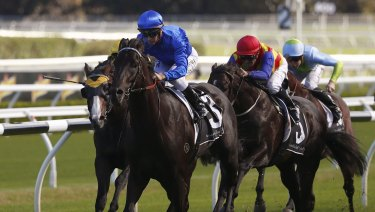 Young bull: Kementari takes out the Randwick Guineas  and is set for his biggest challenge against Winx in the George Ryder Stakes.