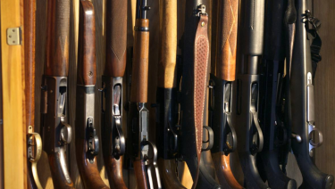 The accuracy of Victoria's firearms registry is under a cloud.
