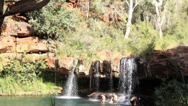 Dales Gorge and Fern Pool.