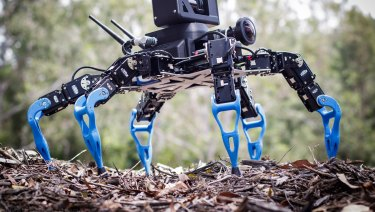 Robot Zee - a hexapod robot used for remote inspection