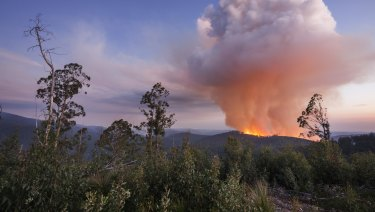 A clearfell logging fire near Mount Baw Baw on April 21.