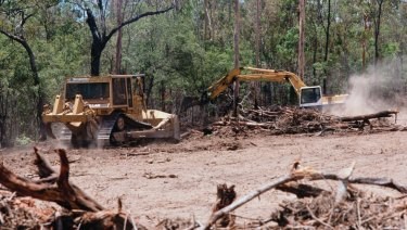 Environmental groups have feared that broadscale clearing rates in NSW would accelerate as they have done in Queensland.