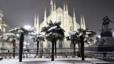 Palm trees are dusted with snow in front of the Gothic Cathedral in Milan.
