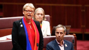 Senator Janet Rice during question time.