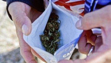 User Jose Bertullo shows his 10-gram bag of legal marijuana bought at a pharmacy in Montevideo, Uruguay. .