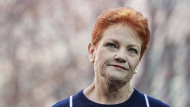 Winning candidates have a poor success rate: One Nation senator Pauline Hanson at Parliament House in Canberra this week.