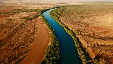 Quintis owns sandalwood plantations near the Kimberley.