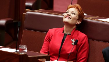 One Nation leader Pauline Hanson voted for the government's income tax cut package this week.
