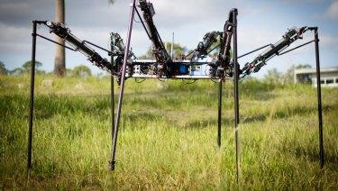 Robot MAX (Multilegged Autonomous eXplorer)
