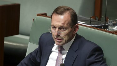 Former prime minister Tony Abbott has again questioned the Coalition's energy policy.