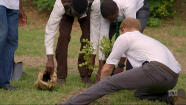 Prince Harry has long championed and launched initiatives for the Queen's Commonwealth Canopy.
