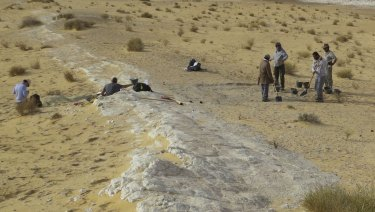 The excavations at the Al Wusta archaeological site in Saudi Arabia in 2016. The ancient lake bed (in white) is surrounded by sand dunes of the Nefud Desert.