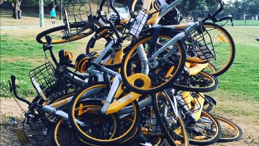 Bike-share bikes dumped in Waverley Oval last year.
