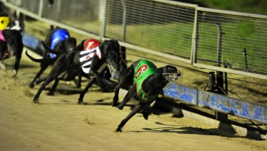 Greyhound racing in the ACT will be banned from April 30.