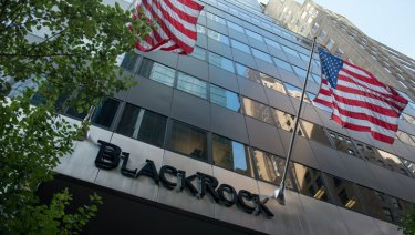 BlackRock is the world's biggest asset manager, and its voting decisions are closely watched.