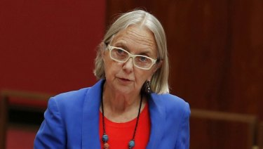 Greens senator Lee Rhiannon has slammed the proposal for exacerbating disunity in the party and has called for it to be withdrawn.
