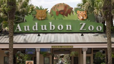 The Audubon Zoo closed after a jaguar escaped from its habitat and killed animals.