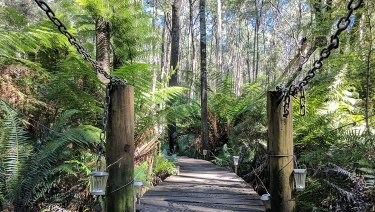 The Helios Society offers  bushwalking opportunities.