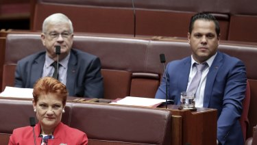 Pauline Hanson's group of senators has been reduced from four to three following a series of fiascos.