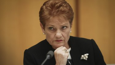 Senator Pauline Hanson during an estimates hearing in federal parliament.