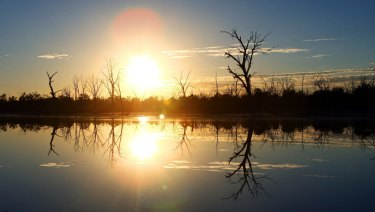 Serious claims have been made about the integrity of the science underpinning the Murray-Darling Basin Plan.