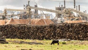 Australian Paper's plant near Morwell in 2015.