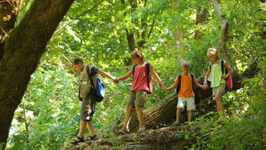 Bushwalking can be a free, immersive experience for kids.