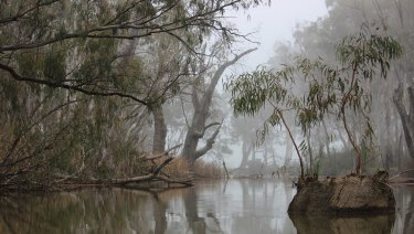 Gunbower Creek in Cohuna.