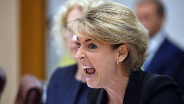 Michaelia Cash addresses a Senate estimates hearing on Wednesday.