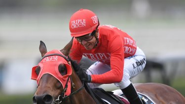 Punter's pal: Redzel will be heavily back ed in the TJ Smith