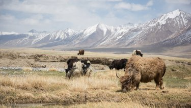 The Wakhan corridor was created as a buffer zone between tsarist Russia and the British Empire in the 19th century.