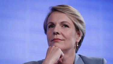 "Labor's education spokeswoman, Tanya Plibersek, says the NAPLAN test has become ""too high stakes""."