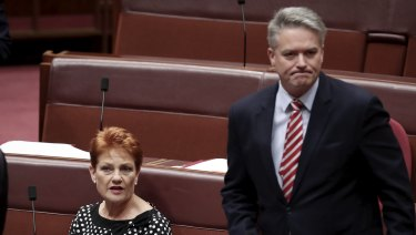 """Senator Pauline Hanson says she has found the advice of companies such as Fortescue Mining """"very helpful""""."""