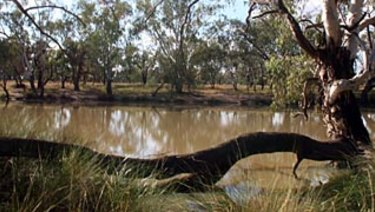Murray-Darling Basin Authority has been resisting the disclosure of its operations to the South Australian Royal Commission in the health of Australia's most important river system.