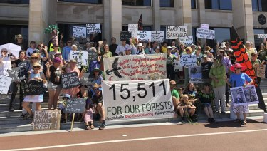Protesters rally at WA Parliament to save South West forests.