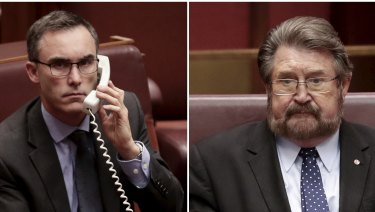 Senators Tim Storer and Derryn Hinch hold the key to the company tax cut package.