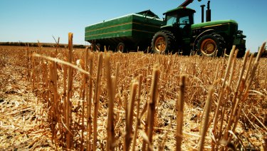 Australia's wheat crop is tipped to be the smallest in a decade.