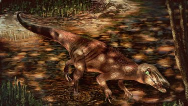 The new predatory dinosaur Tratayenia rosalesi crosses a stream in what is now Patagonia, Argentina roughly 85 million years ago, in this illustrationby Andrew McAfee, Carnegie Museum of Natural History.