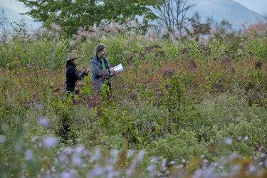 Midori Shintani and Dan Pearson observing the garden in autumn.