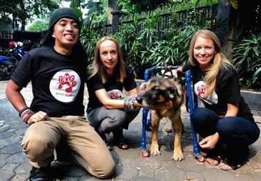 Animal activists with a dog rescued from the meat markets.