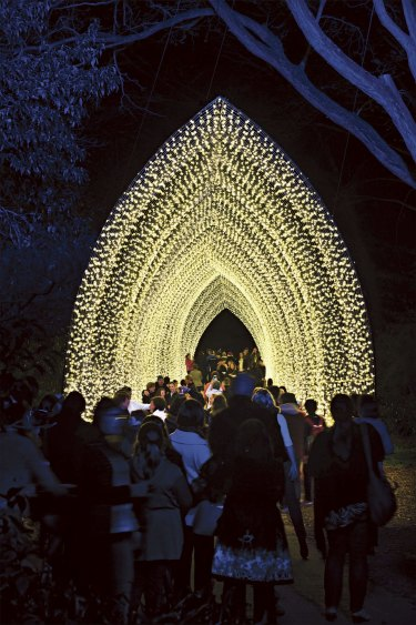Artist's impression of scene from Vivid festival 2016: Cathedral of Light by Mandylights in the Royal Botanic Garden.
