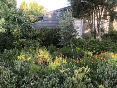 The Woodend garden created by Leon van Schaik is crammed with ideas.