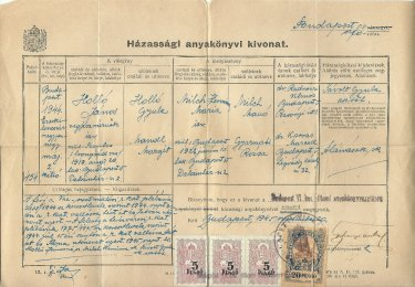 Tim Hollo's paternal grandparents' Hungarian wedding certificate, which was needed to renounce his citizenship.