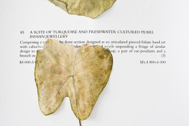 Camille Henrot, Jewels from the Personal Collection of Princess Salimah Aga Khan, 2011-2012,  pressed plants and flowers.
