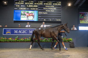 Lot 115, a colt by Snitzel out of  Bonny O'Reilly, was bought by the Coolmore-Chris Waller syndicate for $1.9m on Tuesday.